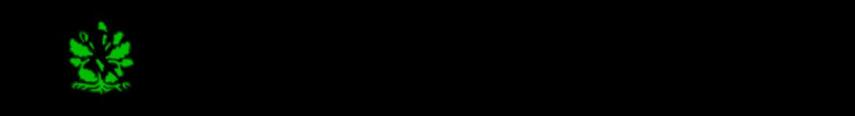 Arbetskopia av       stadslopps         logotype