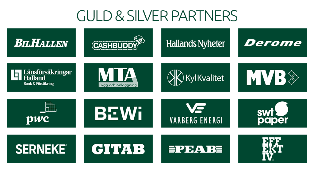Guld silver partners