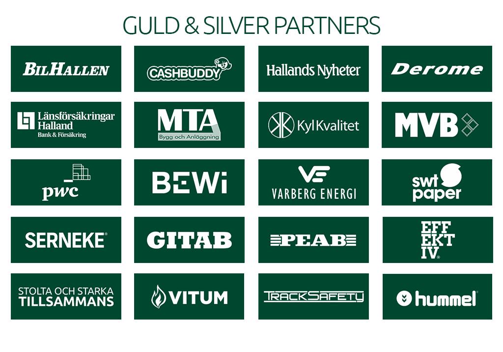 Guld silvers partners 20190228