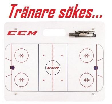 Coaching board2 ccm