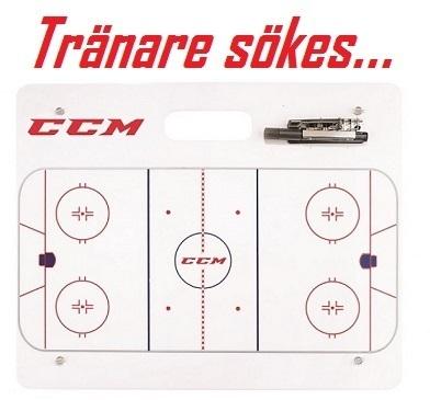 Md coaching board2 ccm