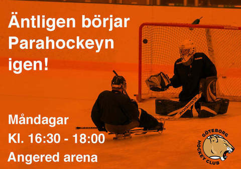Md parahockey