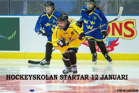Md hockeyskolan 12 januari ver 2