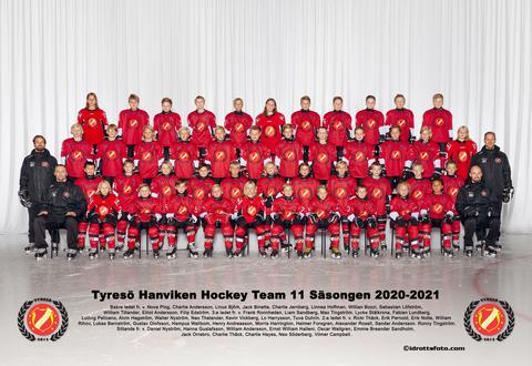 Md team 11