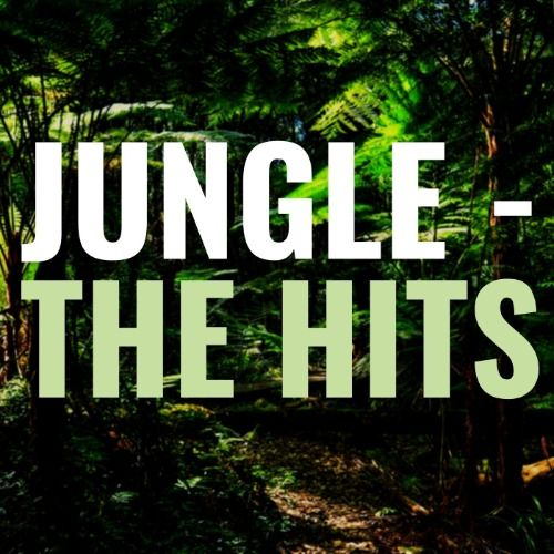 Jungle Hits track ghost producer