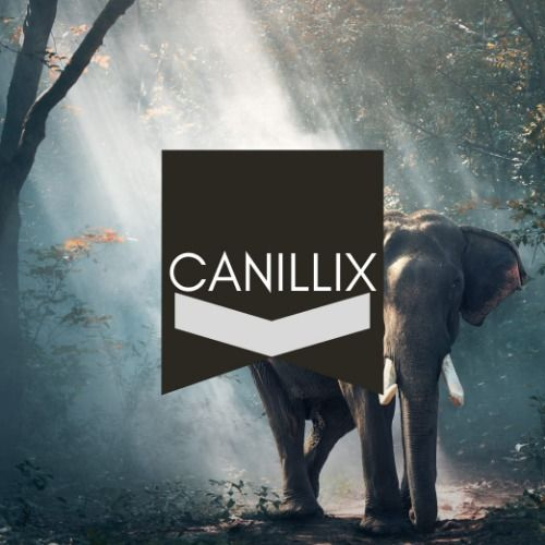 Ghost produced track by Canillix