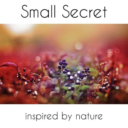 Small Secret