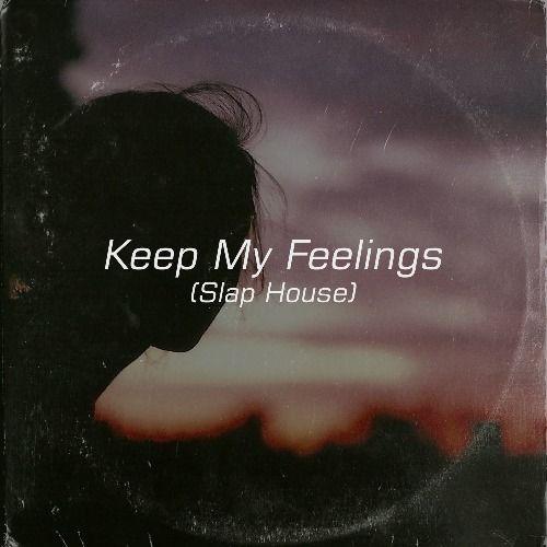 Keep My Feelings