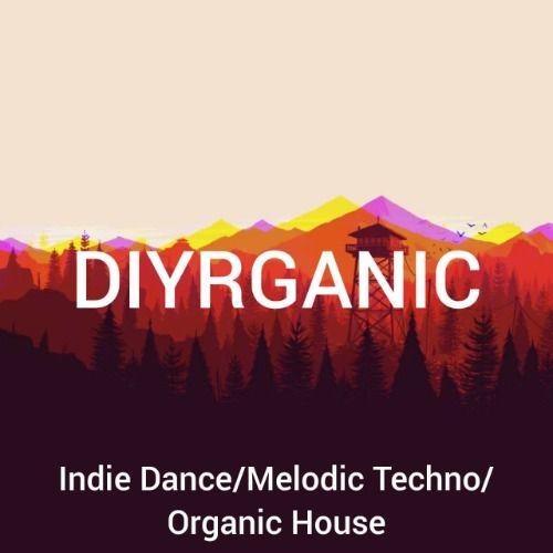 Diyrganic
