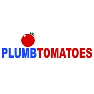 PLUMB TOMATOES- THE TOMATO PLANT COMPANY LIMITED profile picture