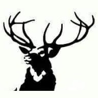 Stag Property Services