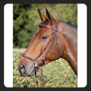 Bilde av Dyon Drop bridle pony brun