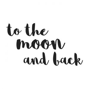 Bilde av To The Moon wallsticker - Stickstay