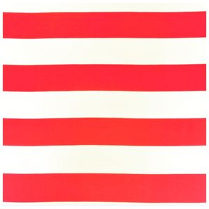 Bilde av Jersey print - Stripes Red/white