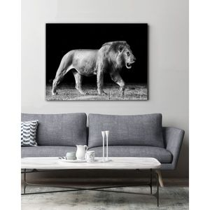 Bilde av Walking lion, Lerret 50x70 cm