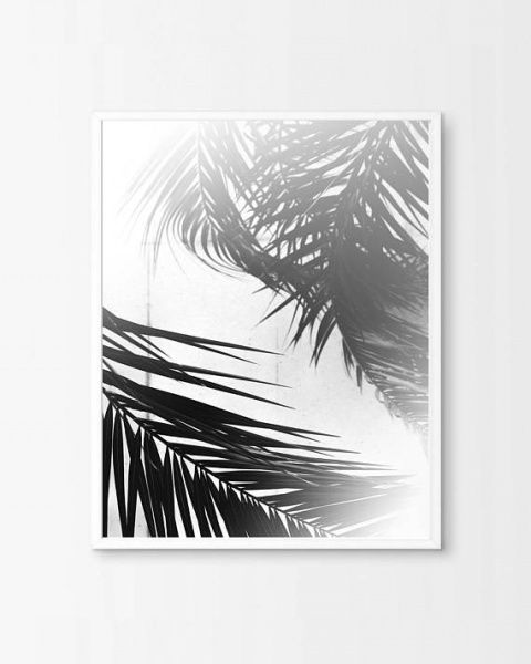 SHADOW LEAVES PALM POSTER