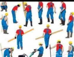 تاجير عمالة رجالية