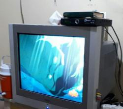 تليفزيون ٢١ بوصة وريسيفر للبيع حالة جيدة