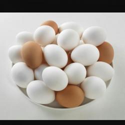 طوابق بيض ( هندي + حباحب + فرنسي )