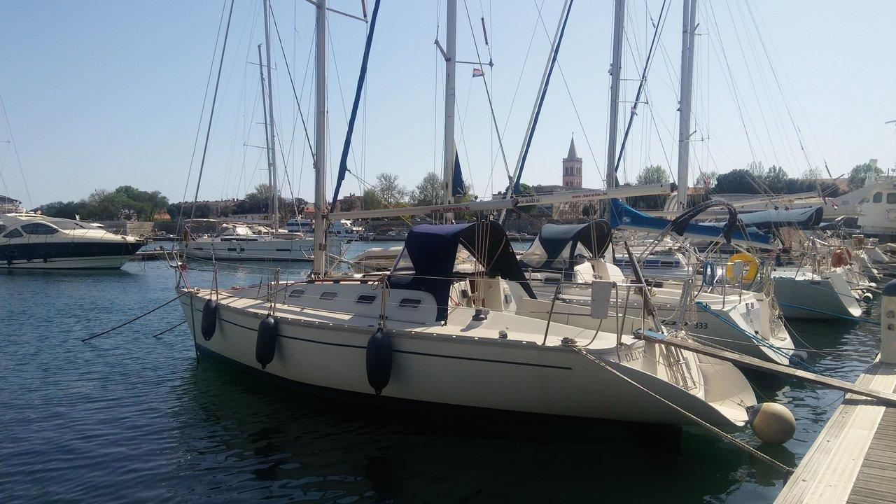 Elan 31S, Delfin