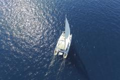 Privilege 465 - 4 + 1 cab. - Multihull Yachting