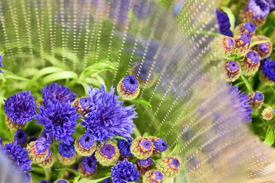 10-New-Covent-Garden-Flower-Market-Flowerona_170929_134048.jpg?mtime=20170929134048#asset:12230