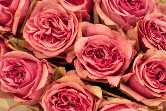 18-New-Covent-Garden-Flower-Market-Flowerona_170929_134054.jpg?mtime=20170929134053#asset:12238