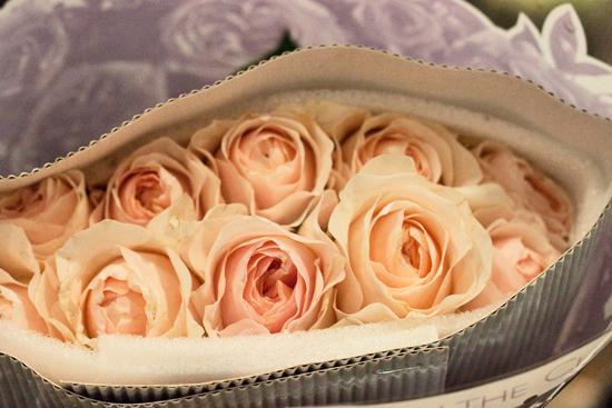 2013-03-23-Juliet-David-Austin-roses-Flowerona.jpg?mtime=20170929144914#asset:12349