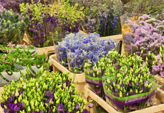 2013-04-17-S-Robert-Allen-New-Covent-Garden-Flower-Market-Flowerona-1.jpg?mtime=20170929143155#asset:12313