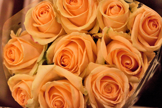 2013-04-22-Peach-Avalanche-Rose-Zest-Flowers-New-Covent-Garden-Flower-Market-Flowerona.jpg?mtime=20170929143200#asset:12318