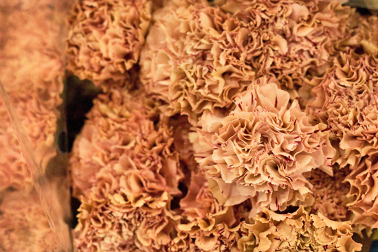 25-New-Covent-Garden-Flower-Market-Flowerona.jpg?mtime=20170928162355#asset:12047