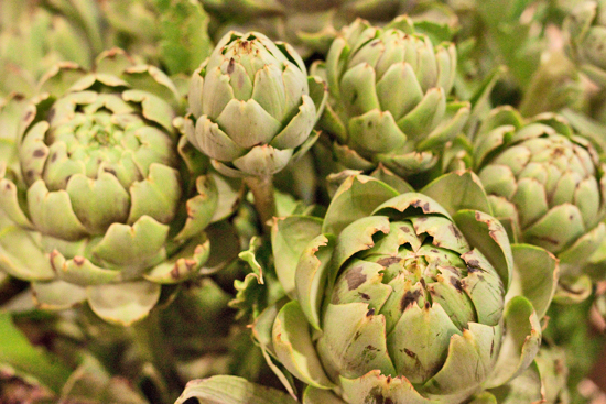 27-New-Covent-Garden-Flower-Market-Flowerona.jpg?mtime=20170928162356#asset:12049