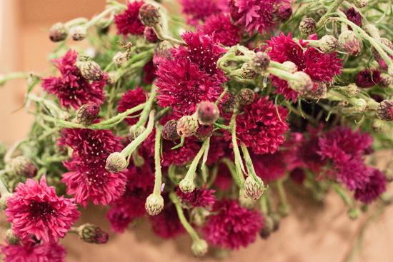 4-New-Covent-Garden-Flower-Market-Flowerona_170929_130918.jpg?mtime=20170929130918#asset:12157