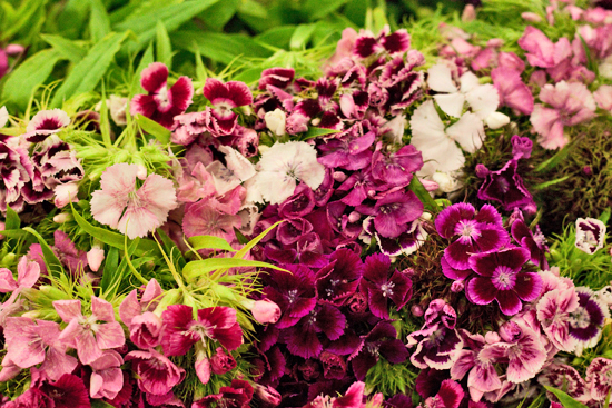 4-New-Covent-Garden-Flower-Market-Flowerona_170929_132904.jpg?mtime=20170929132904#asset:12191