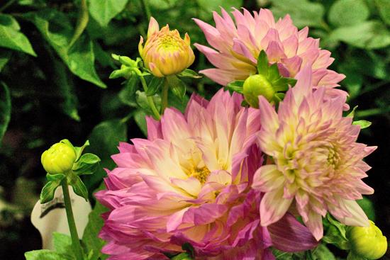 7-New-Covent-Garden-Flower-Market-Flowerona_170929_132906.jpg?mtime=20170929132906#asset:12194