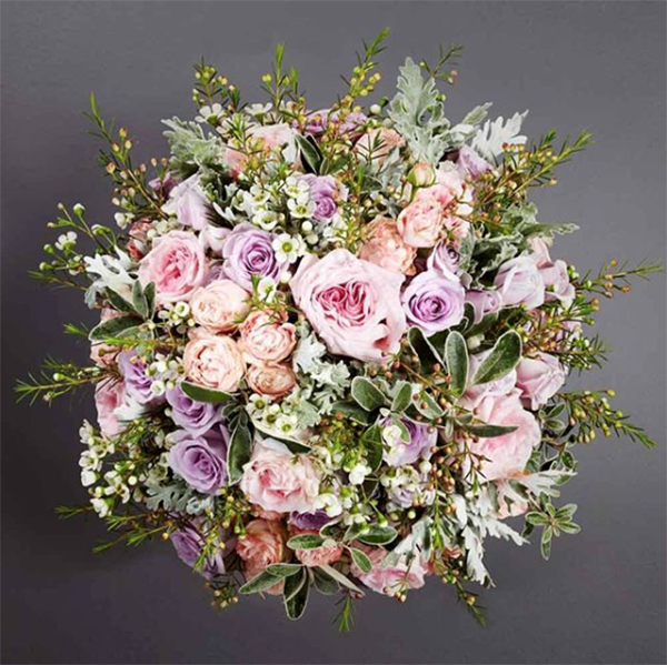 A Florist S Guide To Waxflower New Covent Garden Market