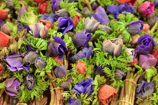 New-Covent-Garden-Flower-Market-April-Market-Report-Flowerona-8.jpg?mtime=20170913160733#asset:10310