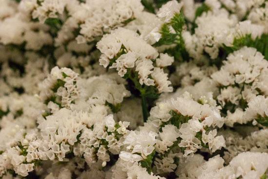 New-Covent-Garden-Flower-Market-February-2015-Market-Report-Flowerona-13.jpg?mtime=20170907141427#asset:9675
