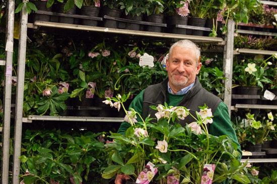 New-Covent-Garden-Flower-Market-February-2015-Market-Report-Flowerona-18.jpg?mtime=20170907141429#asset:9680