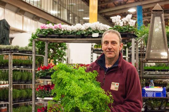 New-Covent-Garden-Flower-Market-February-2015-Market-Report-Flowerona-21.jpg?mtime=20170907141430#asset:9683