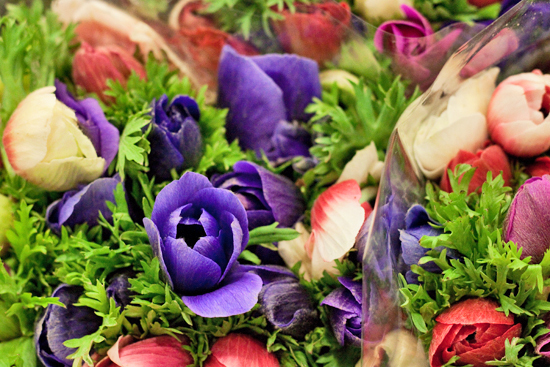 New-Covent-Garden-Flower-Market-March-Market-Report-Flowerona-11.jpg?mtime=20170913161825#asset:10358
