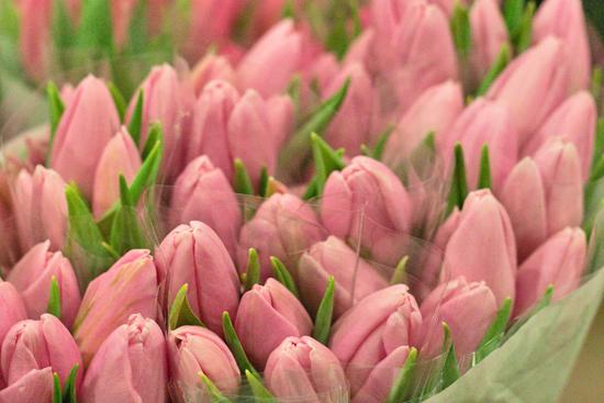 New-Covent-Garden-Flower-Market-March-Market-Report-Flowerona-7.jpg?mtime=20170913161844#asset:10382