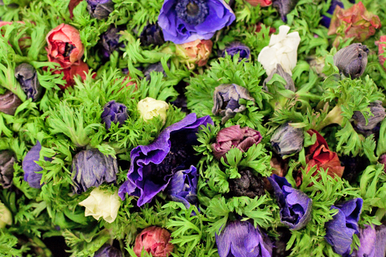 New-Covent-Garden-Flower-Market-November-Market-Report-Flowerona-5.jpg?mtime=20170913112705#asset:9814