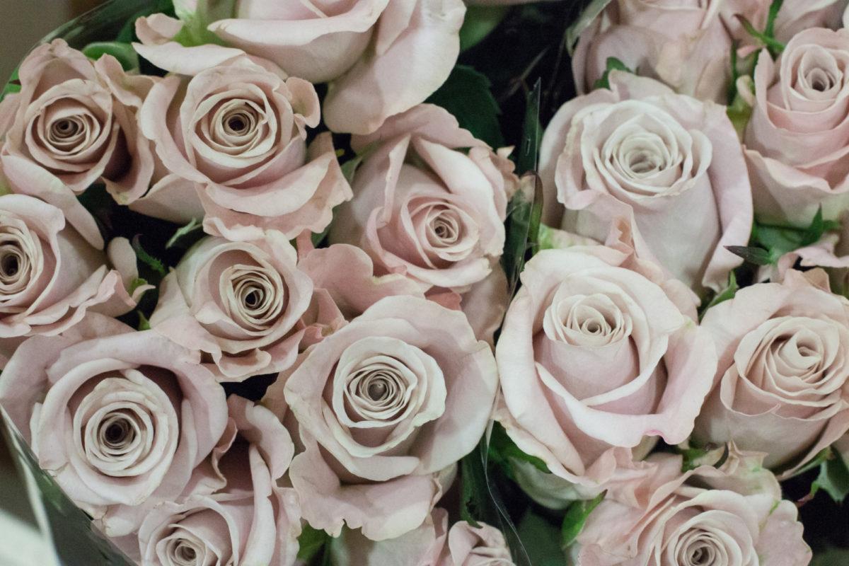 New Covent Garden Flower Market April 2015 Market Report Flowerona 12 Hr