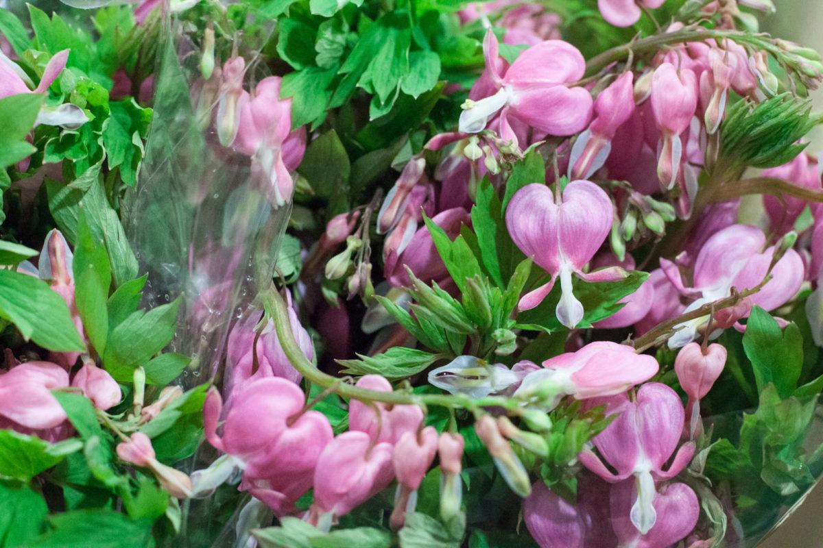 New Covent Garden Flower Market April 2015 Market Report Flowerona 15 Hr