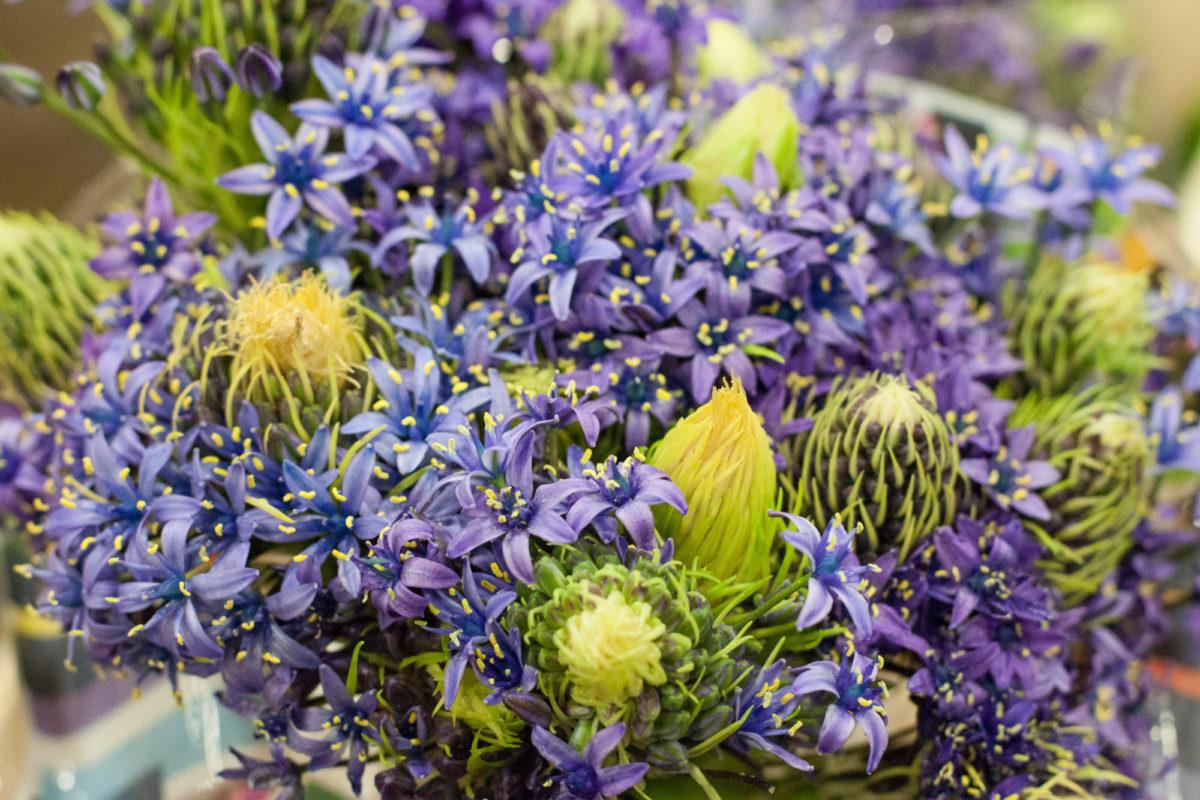 New Covent Garden Flower Market April 2015 Market Report Flowerona 9 Hr