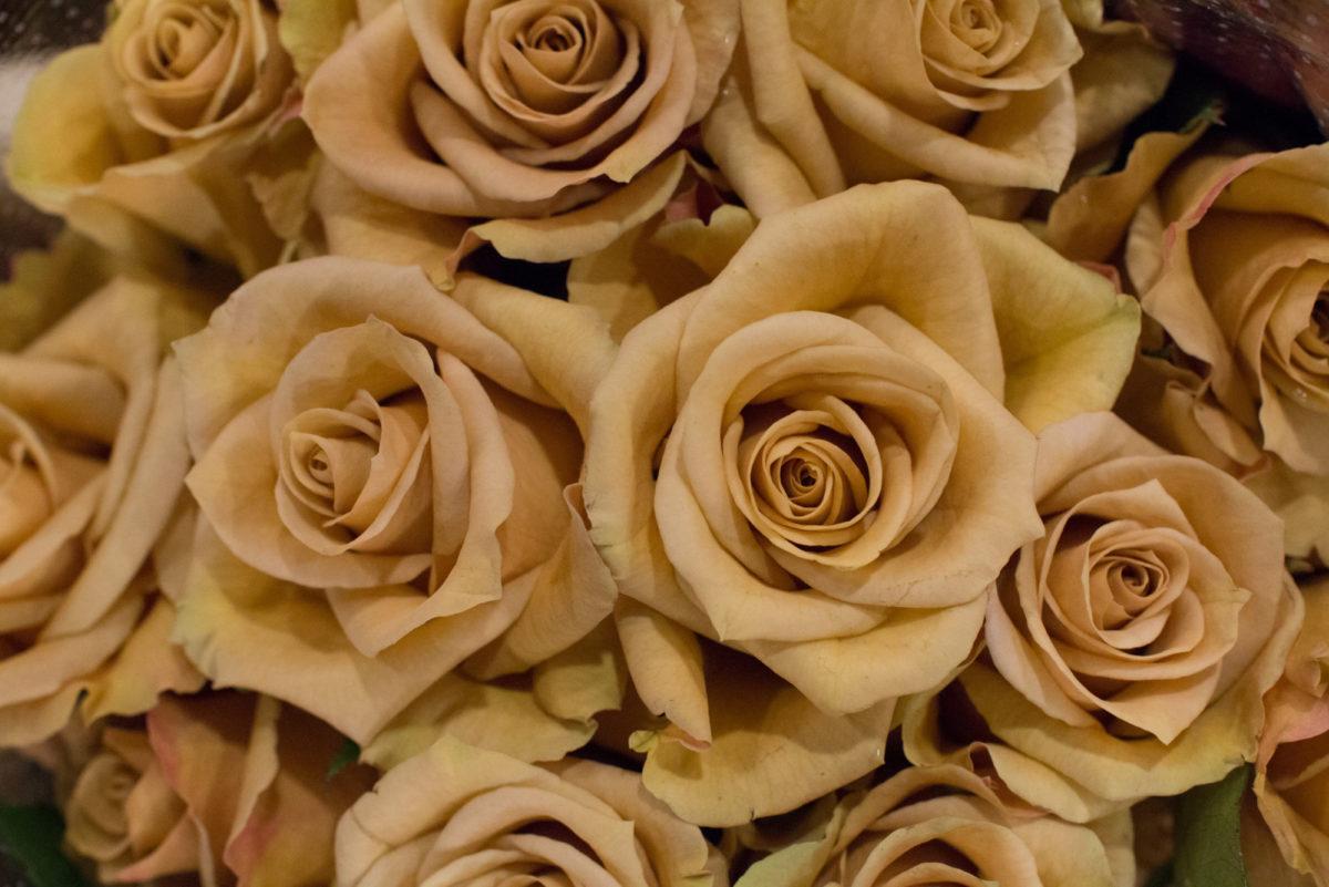 New Covent Garden Flower Market April 2016 Market Report Flowerona Hr 16