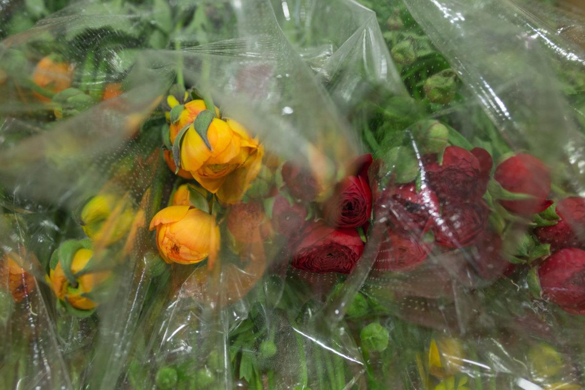 New Covent Garden Flower Market April 2017 Market Report Rona Wheeldon Flowerona British Ranunculus At Dg Wholesale