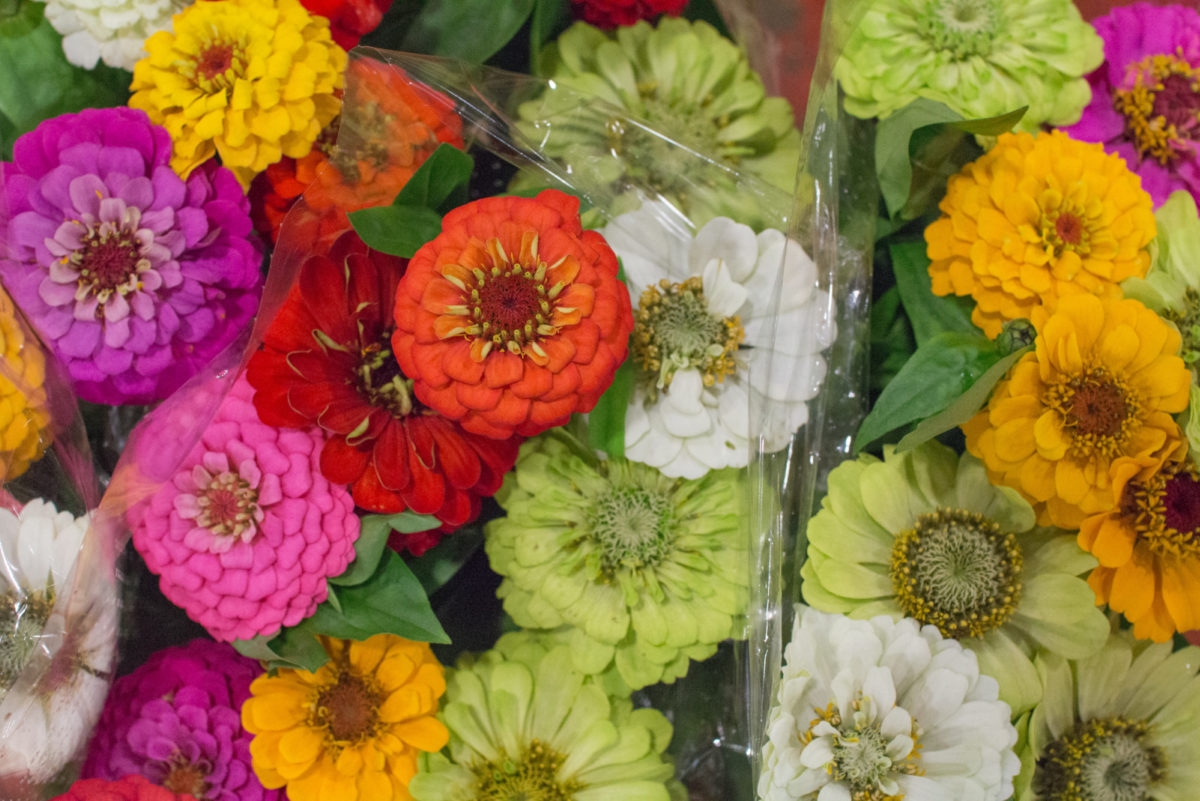 New Covent Garden Flower Market July 2016 Market Report Flowerona Hr 18