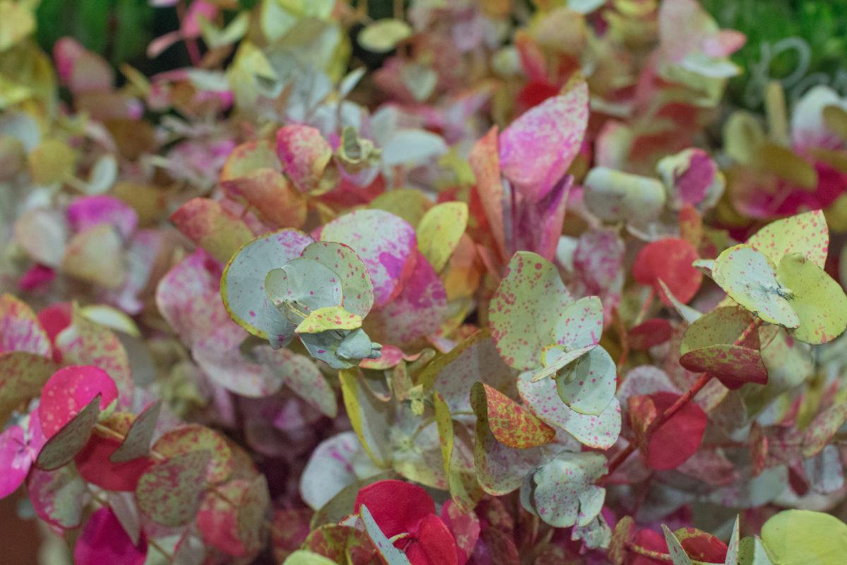 New Covent Garden Flower Market October 2016 Market Report Flowerona Hr A 39